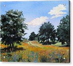 Ranch Road Near Bandera Texas Acrylic Print