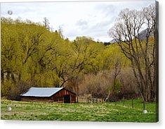 Ranch Shed Under Springtime Trees Acrylic Print by Kae Cheatham