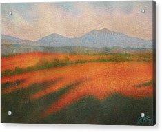 Rangeland Acrylic Print by Robin Street-Morris