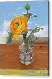 Acrylic Print featuring the digital art Ranunculus Spring by Alexis Rotella