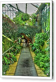 Raptor Seen In Kew Gardens Acrylic Print
