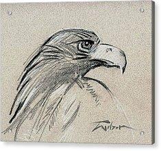Raptor Two Acrylic Print by Ron Wilson