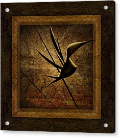 Rare Bird Acrylic Print by Phil Clark