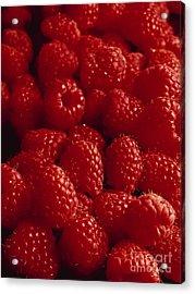 Raspberries Acrylic Print by Kim Lessel