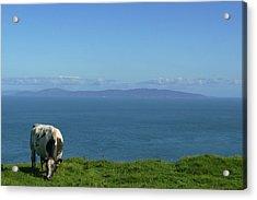 Rathlin Island Acrylic Print