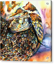 Rattle Snake Acrylic Print