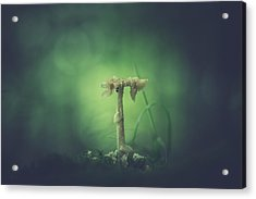 Ravaged Shroom In The Land Of Small Acrylic Print by Shane Holsclaw