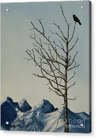 Raven Brought Light Acrylic Print by Stanza Widen