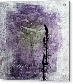Raven Call 3 Acrylic Print