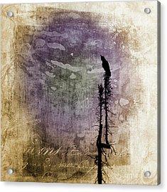 Raven Call 4 Acrylic Print