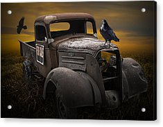 Raven Hood Ornament On Old Vintage Chevy Pickup Truck Acrylic Print