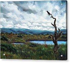 Raven In A Bleak Landscape Acrylic Print by Laura Iverson