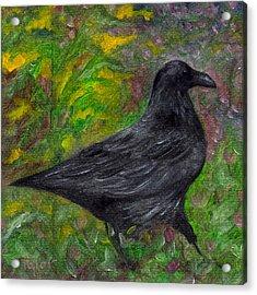 Raven In Goldenrod Acrylic Print