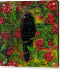 Raven In Roses Acrylic Print by FT McKinstry