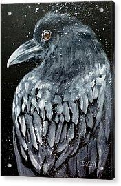 Raven In Snow Acrylic Print