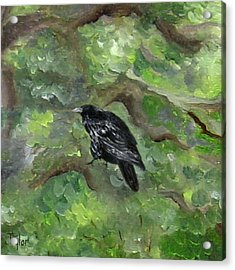 Raven In The Om Tree Acrylic Print
