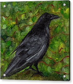 Raven In Wirevine Acrylic Print