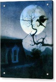 Raven Landing On Branch In Moonlight Acrylic Print by Jill Battaglia