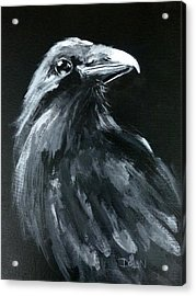 Raven Looking Right Acrylic Print