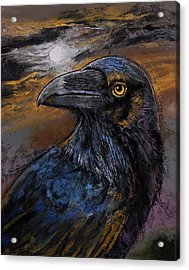Raven Acrylic Print by Michael Creese
