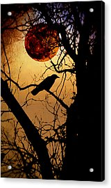 Raven Moon Acrylic Print by Bill Cannon