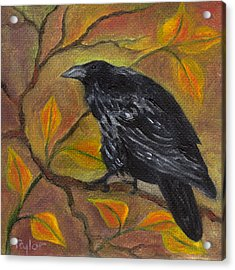 Raven On A Limb Acrylic Print