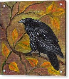 Raven On A Limb Acrylic Print