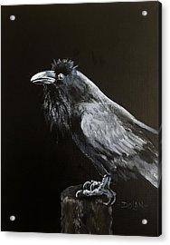 Raven On Post Acrylic Print