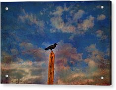 Acrylic Print featuring the photograph Raven Pole by Jan Amiss Photography
