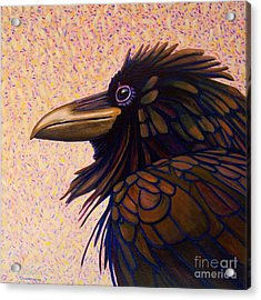 Raven Shaman Acrylic Print by Brian  Commerford