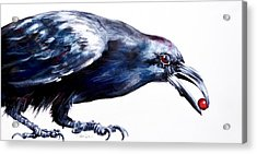 Raven With Berry Acrylic Print
