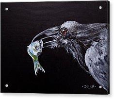 Raven With Fish Acrylic Print
