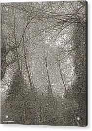 Ravenna Acrylic Print