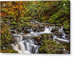 Cascades And Waterfalls Acrylic Print