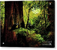 Ravens Of The Full Moon Night . 7d5443 Acrylic Print by Wingsdomain Art and Photography