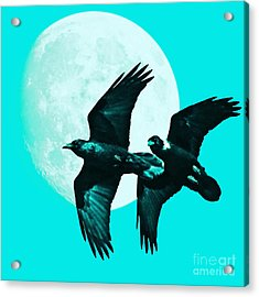 Ravens Of The Moon . Cyan Square Acrylic Print by Wingsdomain Art and Photography