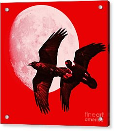 Ravens Of The Moon . Red Square Acrylic Print by Wingsdomain Art and Photography
