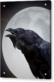 Ravensong Acrylic Print