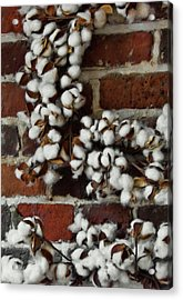 Raw Cotton Acrylic Print by JAMART Photography