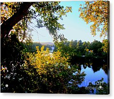 Acrylic Print featuring the photograph Rawdon by Elfriede Fulda