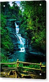 Raymondskill Falls - Hdr Acrylic Print by David Hahn