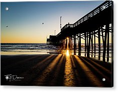 Rays Of Evening Acrylic Print