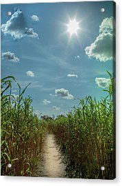 Acrylic Print featuring the photograph Rays Of Hope by Karen Wiles