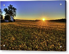 Rays Over The Field Acrylic Print