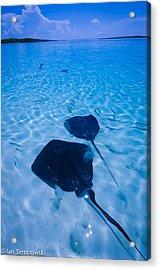 Rays Under Feet Acrylic Print