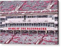 Razorback Stadium Acrylic Print by JC Findley