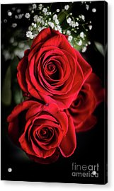 Red Roses  Acrylic Print by Cheryl Baxter