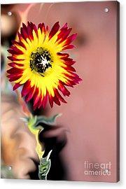 Reach Acrylic Print