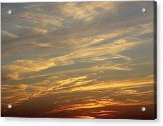 Reach For The Sky 7 Acrylic Print