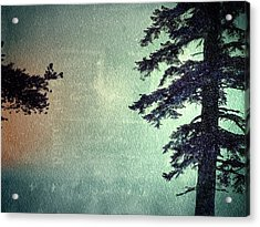 Acrylic Print featuring the photograph Reach Me  by Mark Ross